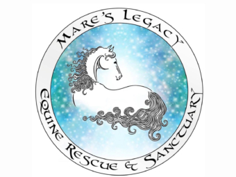 Mare's Legacy Equine Rescue and Sanctuary